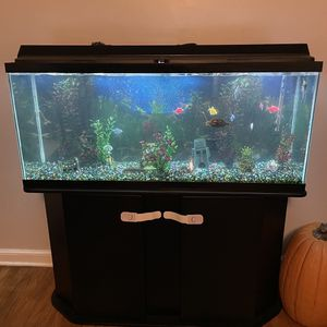 Fish tank for Sale in Lombard, IL