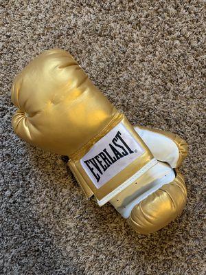 Good Everlast Boxing Gloves for Sale in Nashville, TN