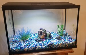 Fish Tank for Sale in Reynoldsburg, OH