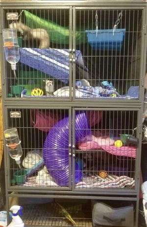 FERRET /DOUBLE FERRET NATION CAGE for Sale in Weston, WV
