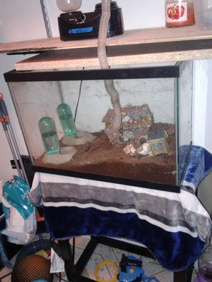 Tank with humidifier and accessories for Sale in Takoma Park, MD
