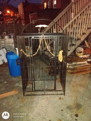 Rod iron bird cage approximately 4 ft tall 3 foot wide for Sale in St. Louis, MO