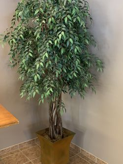 Large Artificial Plant for Sale in Columbia Station,  OH