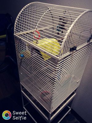 Large white bird cage for Sale in Portland, OR