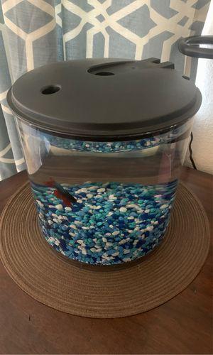 2.5 gallon fish tank for Sale in Phelan, CA