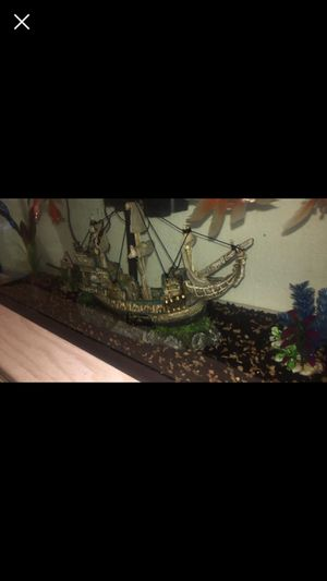 40 Gallon Fish Tank for Sale in Phoenix, AZ