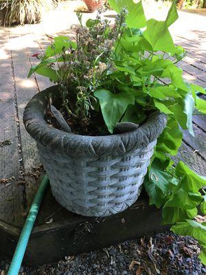 Medium size concrete planter Basket Weave design for Sale in Portland, OR