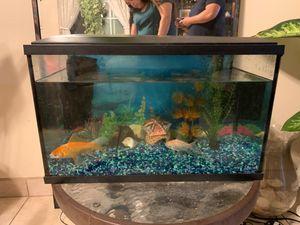 10gallon tank for Sale in Pomona, CA