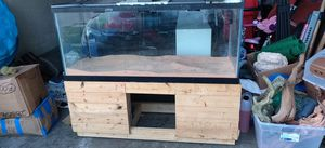 100g aquarium and stand (accessories also available) for Sale in Saginaw, TX