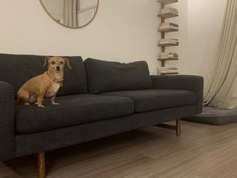 West Elm Eddy 82' Sofa for Sale in Pflugerville,  TX