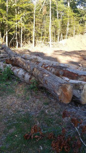 Fire wood for Sale in Rio Grande, NJ