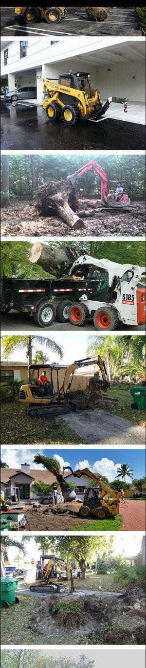bobcat dump truck palm tree stump servis for Sale in Miami, FL