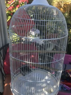 White Bird Cage With Stand Bird Not Included for Sale in Santa Fe Springs,  CA