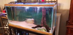 Fish tank and stand for Sale in Bristol, PA