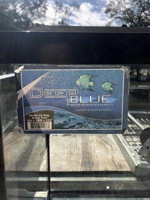 Deep Blue Aquarium for Sale in Lakeland, FL