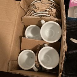Coffee Cups for Sale in Hollywood,  FL