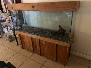 100 GALLON REPTILE TANK for Sale in Tracy, CA