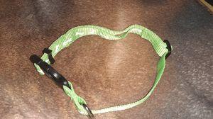 Dog collar for Sale in South Salt Lake, UT