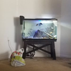 Aquarium free free all comes with for Sale in Davenport, FL