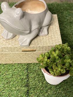 Ceramic Frog Planter Pot for Sale in St. Cloud,  FL