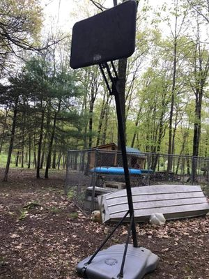 Basketball stand, brand new hoop with net and ballback for Sale in Pine Plains, NY