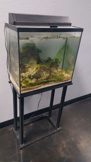 Black seal fish tank aquarium for Sale in Austin, TX