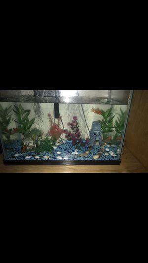 55 gallon fish tank for Sale in North Las Vegas, NV