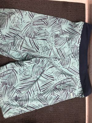Patagonia Mens Shorts Size 31 for Sale in Houston, TX
