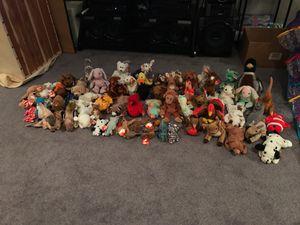 Beanie babies and storage holder for Sale in Fairfax, VA