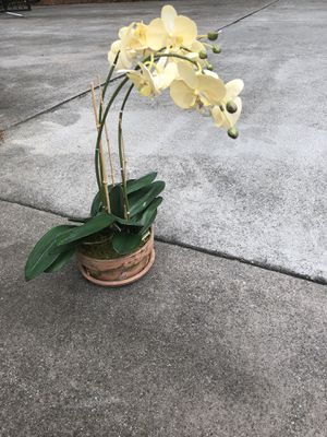 Fake orchid plant for Sale in Johns Creek, GA