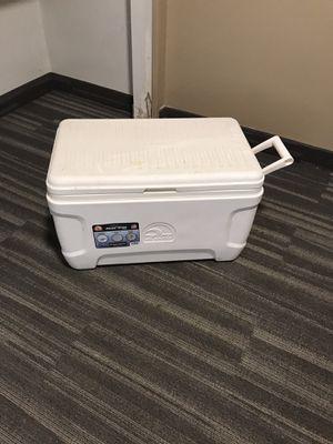Igloo cooler for Sale in Ypsilanti, MI