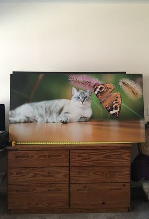Cat canvas for Sale in Mocksville, NC