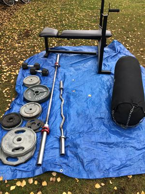 Weight set and punching bag for Sale in Lynnwood, WA