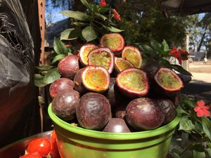 Passion Fruit (exotic) for Sale in RANCHO SUEY, CA