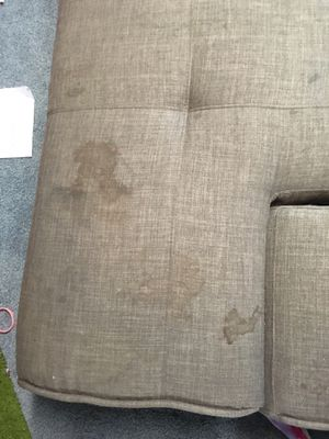 Sofa bed free for Sale in Beaverton, OR
