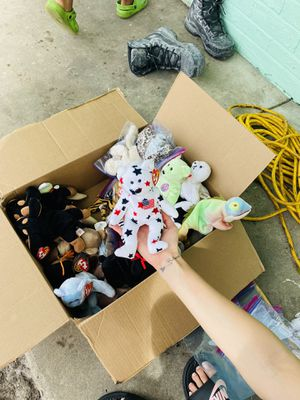 Beanie babies for Sale in New Port Richey, FL