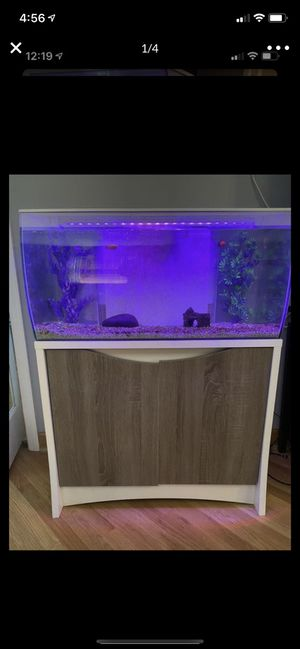 32.5 gallon tank with base. Plants, 4 fish and white rocks included for Sale in River Grove, IL