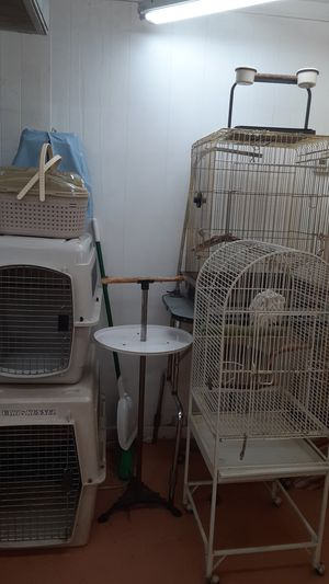 Bird cages and bird stands for Sale in Burbank, CA