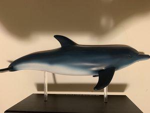 4D vision dolphin anatomy model for Sale in Davis, CA