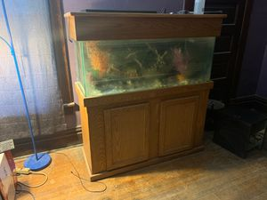 55 gallon Aquarium for Sale in Magnolia, IL