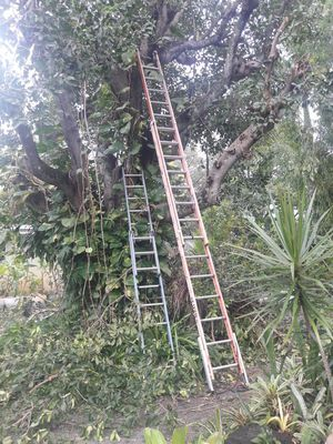Ladders for Sale in Pompano Beach, FL
