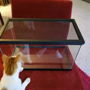 10 Gallon Tank And Lid For Your Fish Or Reptile for Sale in Seattle, WA