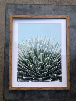 Succulent Print for Sale in Windsor Hills, CA