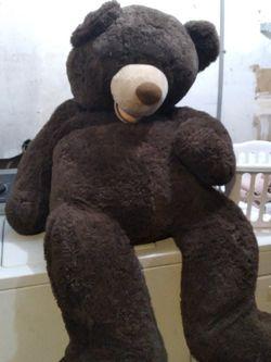 Teddy Bear for Sale in Riverbank,  CA