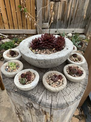 Handmade pots with plants succulents for Sale in Denver, CO