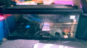 40 gallon tank with pump for Sale in Aurora, CO
