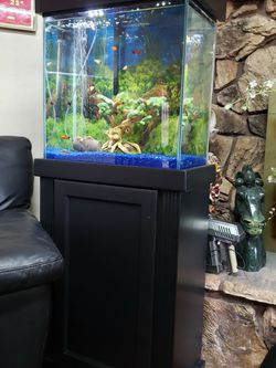 20 Gallon Fish Tank Comes With Everything for Sale in West Covina,  CA