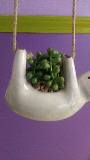 Hanging Sloth Shaped Planter for Sale in Gresham, OR
