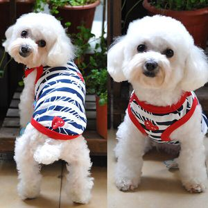 Blue Stripe Dog Shirts for Sale in Baltimore, MD