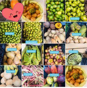 Llego la fruta senor@s for Sale in Adelphi, MD